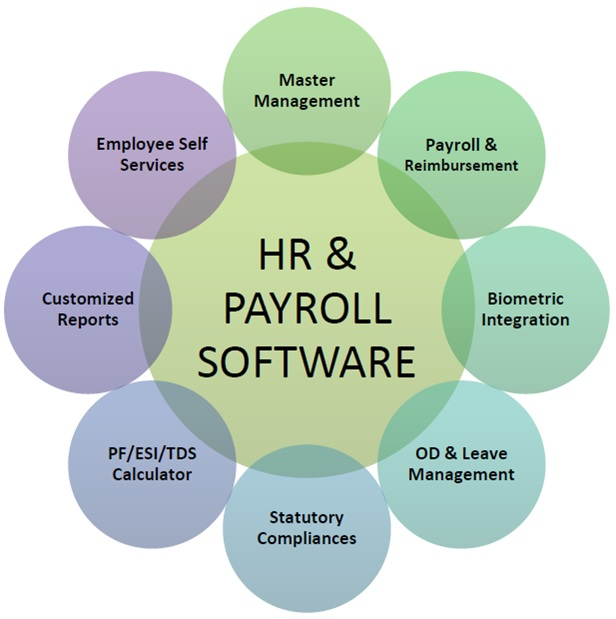 Best HR and Payroll Software